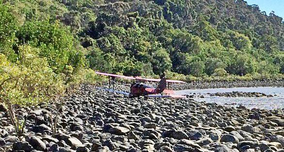 The Tiger Moth plane made an emergency landing to the right of Funnel Bay on July 2.
