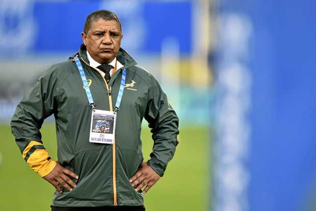On borrowed time ... South Africa coach Allister Coetzee.