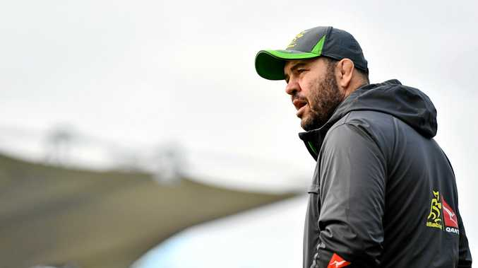 Michael Cheika looks on during a Wallabies training session.