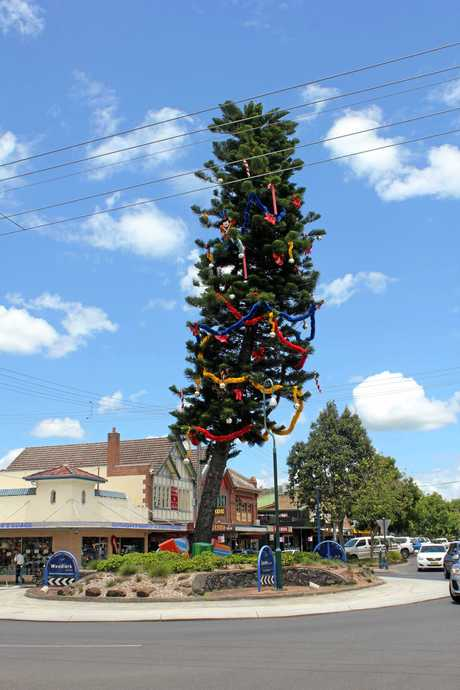 Lismore's wonky Christmas tree