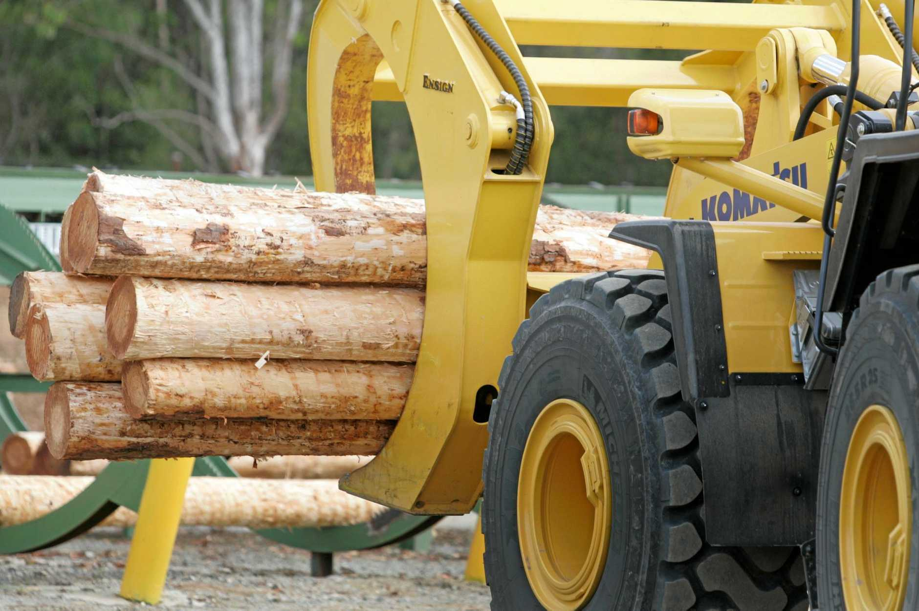 Gympie Regional Council is considering developing a wood encouragement policy.