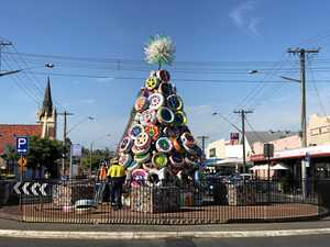 What do you think of your new Christmas tree, Lismore?