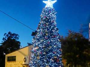 REVEALED: The best Christmas tree in the Northern Rivers