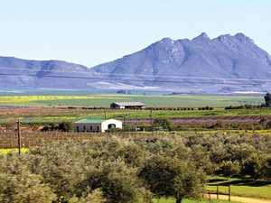 TRAVEL: A South African bedroom with a view