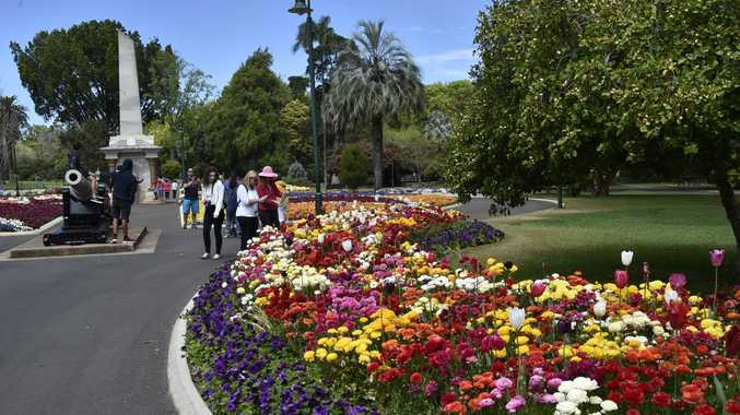 Toowoomba's famous Queens Park in full bloom.