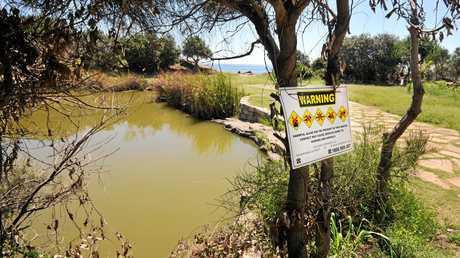 Angourie blue pools has algae.January 18, 2015Photo: Leigh Jensen / Daily Examiner
