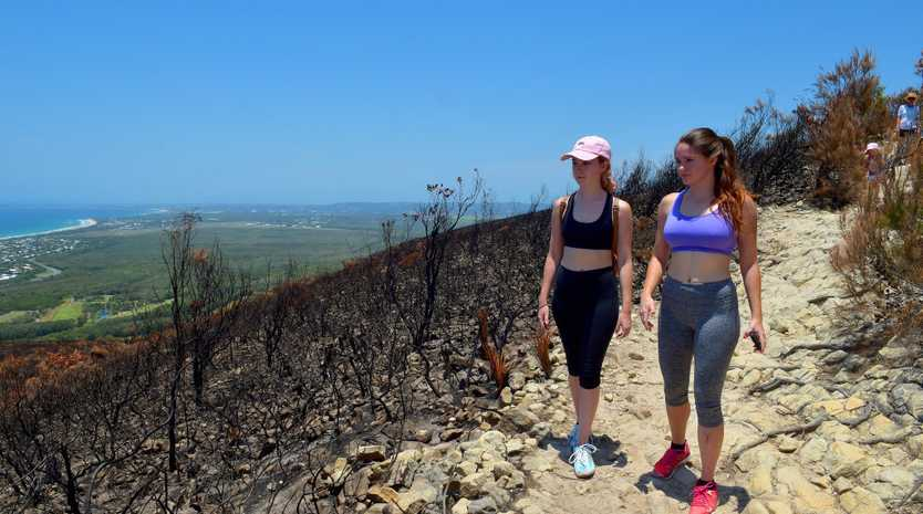 Mt. Coolum is recovering after a recent fire. Bushwalkers admire the view from the top.Jessica and Cassie Bagley walk the track.