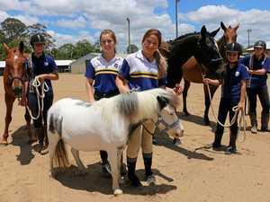 Equestrian students fast-track graduation