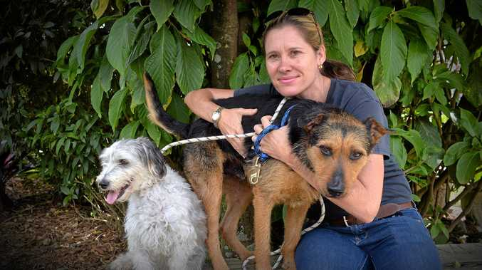 Sunshine Coast animal refuge are doing adoption drive for dogs. Penny Brischke with (right) Malty, 6, and Matty, 7.