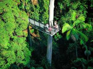 Top things to do: Tweed Heads to Brisbane