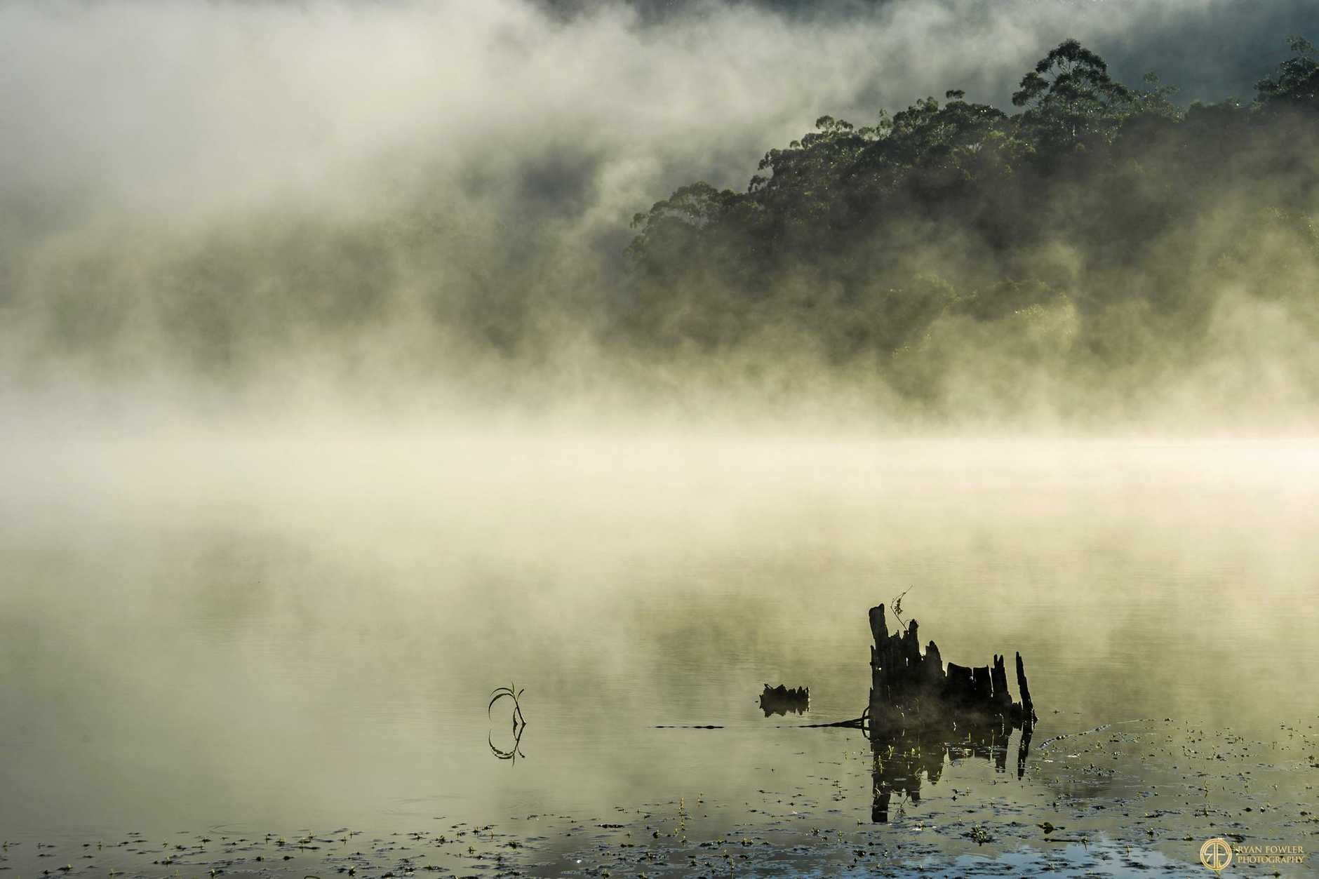 MYSTICAL: Misty morning shot over Clarrie Hall Dam.