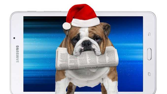 Fetch this great deal this Christmas! Bulldog not included.