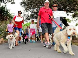 Dog beach ban here to stay: Connolly