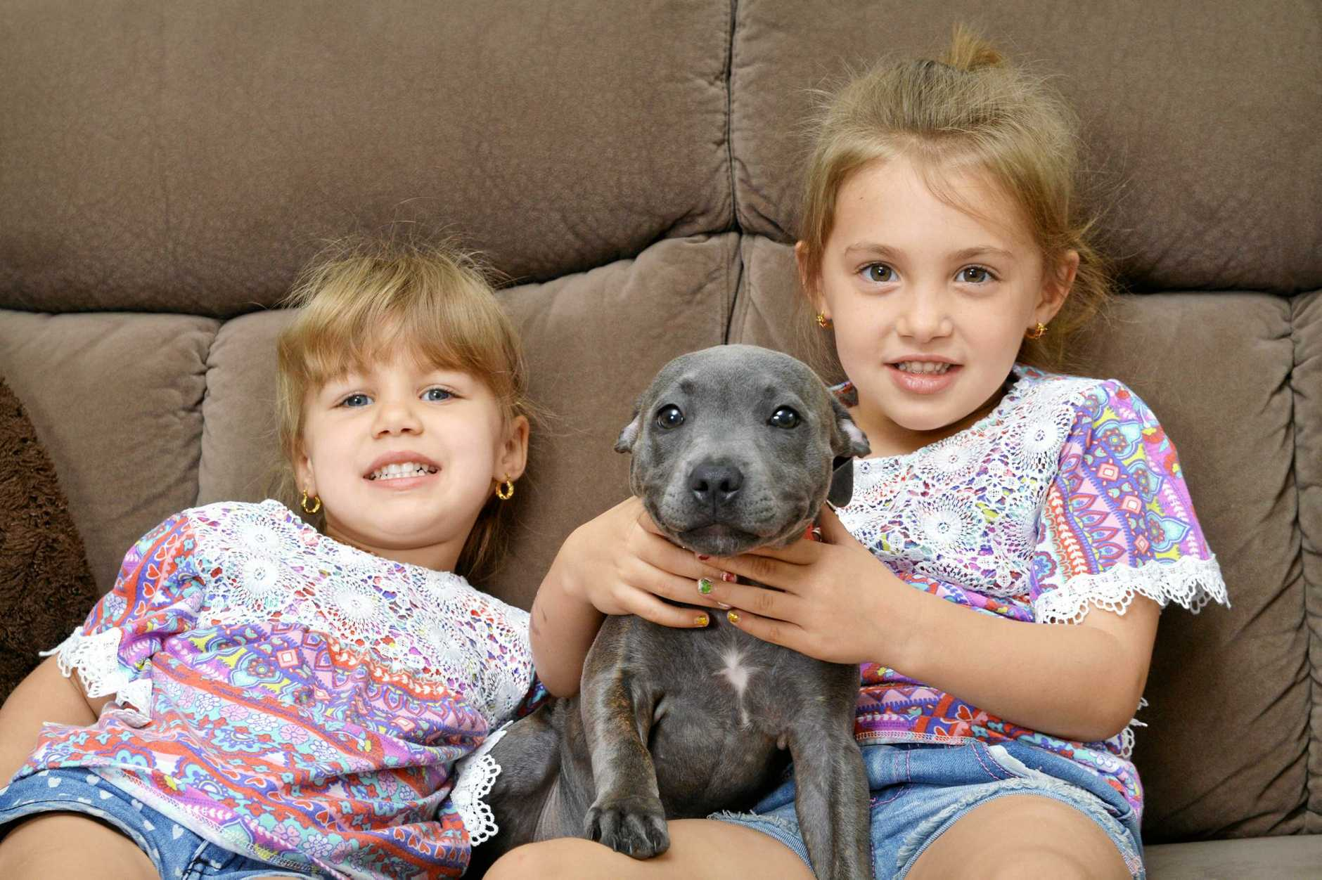 Taylor Smith, 3 and Bailey-Noela Smith, 5, are happy to have their puppy Peppa back after she was stolen.