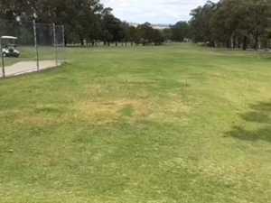 Caleb Brownlie hits off at golf in Warwick