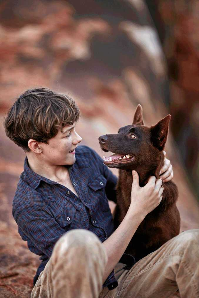 Levi Miller and the dog Phoenix in a scene from the movie Red Dog: True Blue.