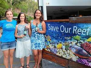 Hayman staff clean to save reef