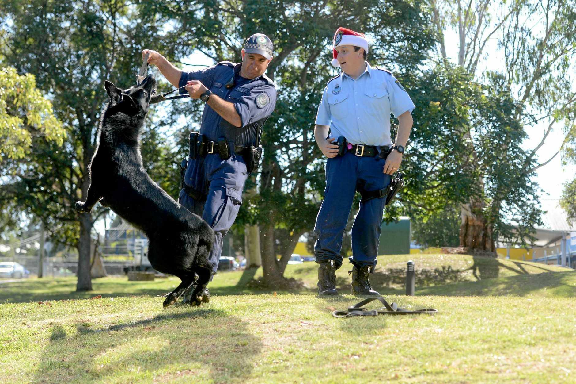 Having some festive fun are Senior Constable Dave Kotek, police dog Ken and Senior Constable David Henderson from the Richmond Local Area Command Crime Prevention Unit.