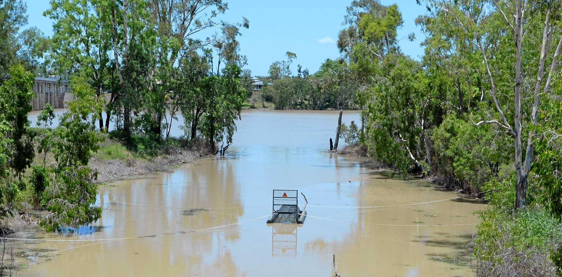 Multiple crocodile sightings near Splitters Creek has resulted in a croc trap being placed in the waterway near the outflow to the Fitzroy River.