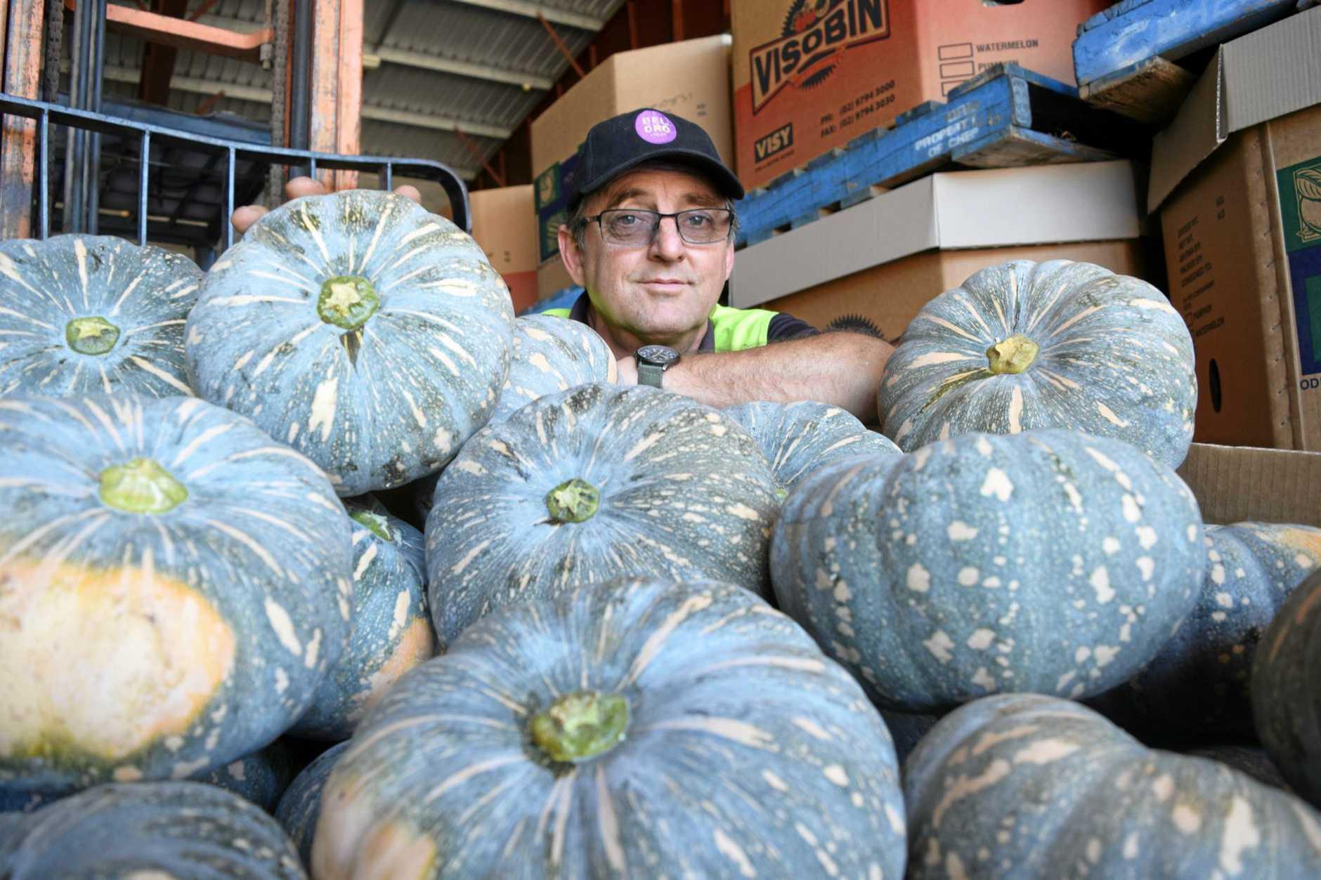 PUMPKIN APLENTY: Beemart's Geoff Gauld says pumpkin is cheap and abundant this Christmas.