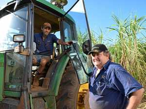 BREAKING: ACCC proposes to approve cane growers collective bargaining