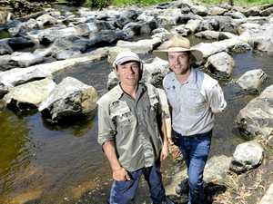 Catchment Solutions fisheries biologist Matt Moore and Ipswich City Council waterways health officer Phil Smith look over the tag and release of fish at the fish ladder at Berry's Weir.