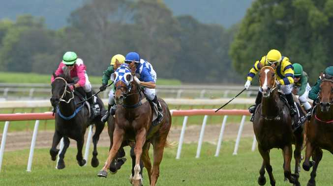 Fiona Jervis rides Storm Anchor for the win, in race number 1 at the Murwillumbah Races on Melbourne Cup day. The last race day at Murwillumbah.
