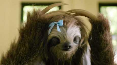 Stoner Sloth gave us plenty of laughs.