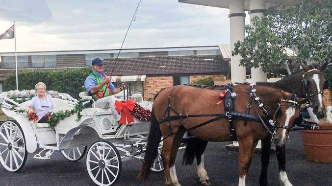 CHRISTMAS CARRIAGE: The horse-drawn carriage makes a stop on a tour last week.