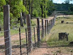 Landcare investment targets pests