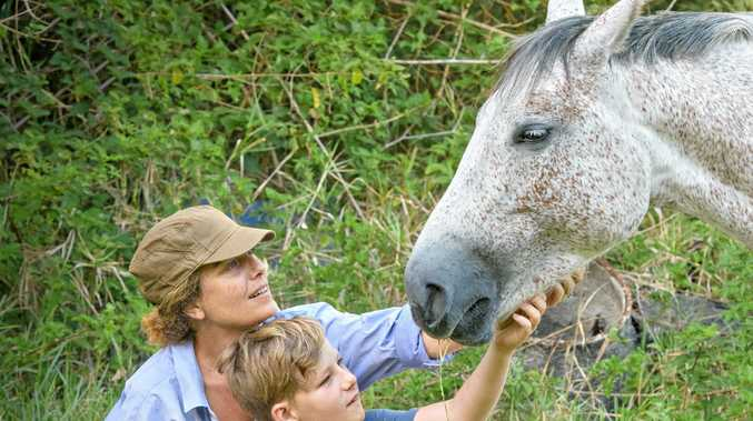 FRIGHT: Zac and Sarah Moerman of Iluka with their horse Biscuit, who has been harassed in her paddock at night.