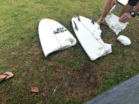 Surfer Colin Rowland's surfboard was bitten in half during a shark attack at Seven Mile beach, Booti Booti, NSW.