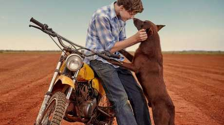 FOR REVIEW AND PREVIEW PURPOSES ONLY. Levi Miller and the dog Phoenix in a scene from the movie Red Dog: True Blue. Supplied by Roadshow Films.