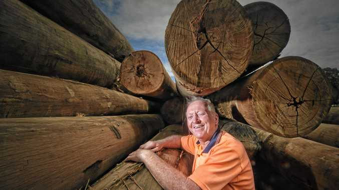 Peter Lyons celebrates 40 years working with timber at Notaras Sawmill