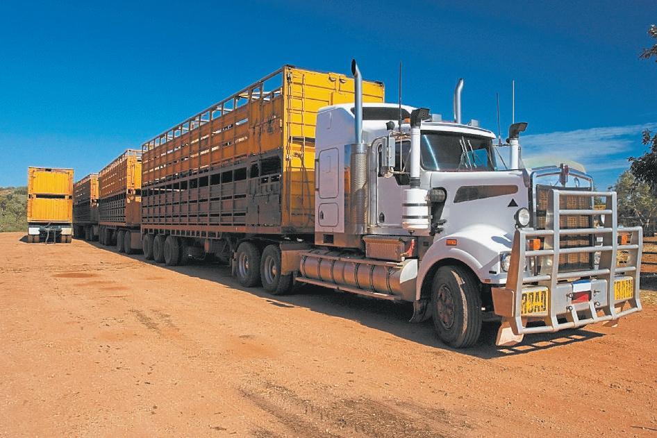 ROADTRAIN: Type 2 road trains carrying cattle.