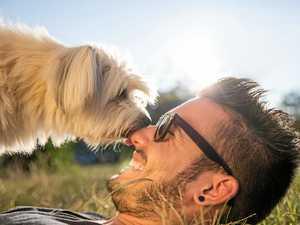 Society needs to change its attitude towards dogs