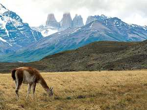 Chile: Patagonia draws you in