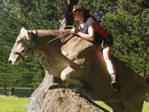 Kiwi girl can't have horse, teaches cow to jump instead