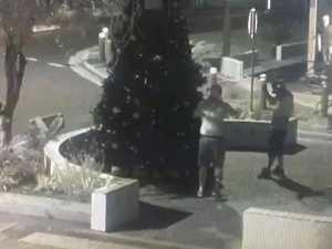 CCTV footage christmas tree vandals