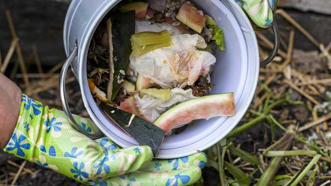 Why not aim to cut down on bin waste by turning your food scraps into compost for the garden?