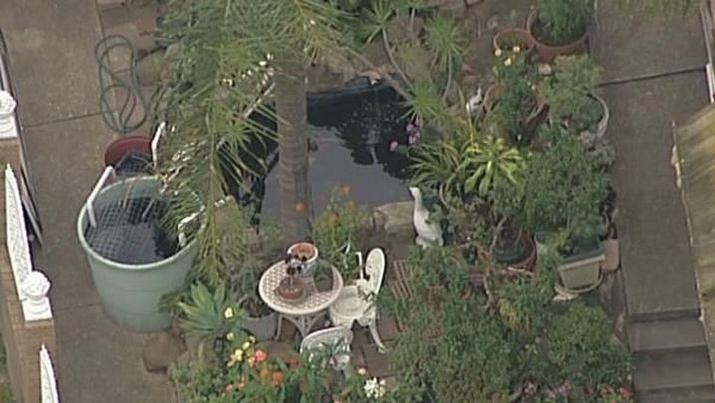 The pond where the toddler is believed to have been found.