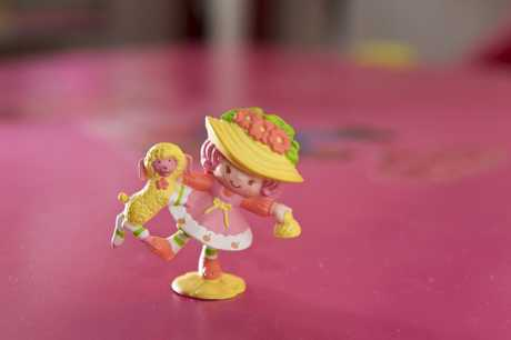 Maria Hogan says this item is the most rare of her extensive collection of Strawberry Shortcake, worth about $6000.