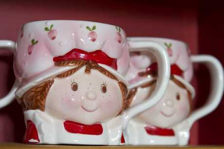 One item of the extensive collection of Strawberry Shortcake collectables owned by Maria Hogan.
