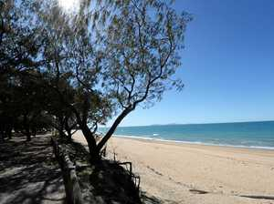 Beaches reopened after stingers found earlier
