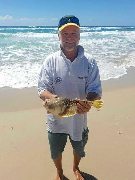 Paul Ellis caught this rare deep sea fish, the Stargazer, off Lennox Head.