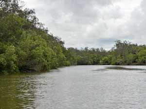 Is there a croc at Coolum? We took a look