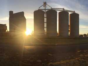 Grain processing business wants new Wellcamp factory