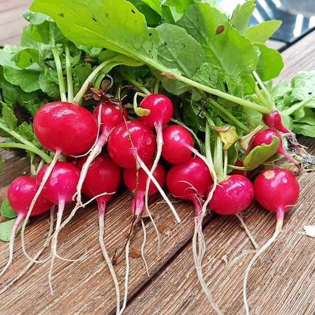 Add crunch with radishes.