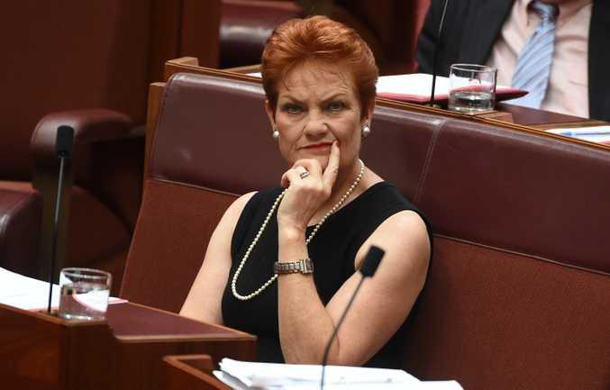 Pauline Hanson in the Senate. Source: AAP.