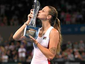 Red-hot Pliskova on track for grand slam success